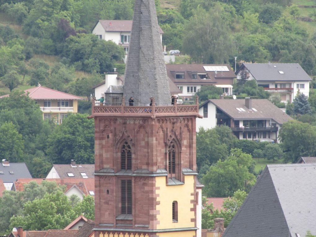 LPT Wertheim 2011__2011__IMG_9518